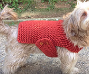 How to loom knit an easy dog sweater.